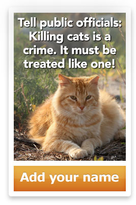 Tell public officials: Killing cats is a crime. It must be treated like one! Add your name.