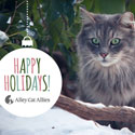 ACA_Holiday_eCard_enews.jpg
