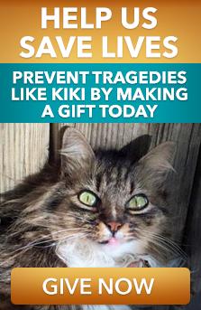 Remember Kiki