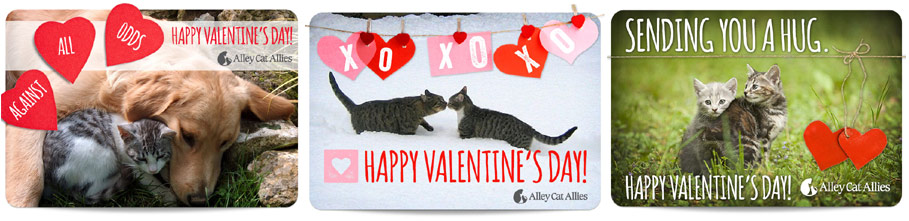 Available 2013 Valentine's Day eCards