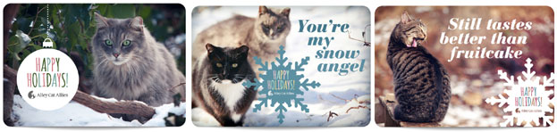 Available 2012 Holiday eCards