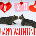 Valentine eCards